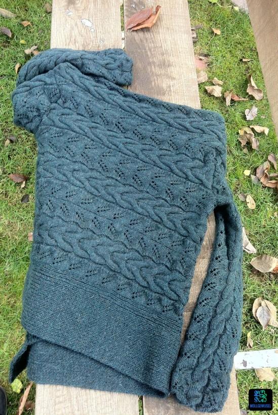 Wayside Lace Cardigan_fertig.13